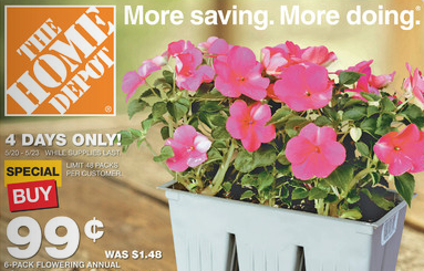 Home-Depot-Flowers-Sale Flowering Plants At Home Depot on orchids at home depot, fruit trees at home depot, succulents at home depot, palm trees at home depot, bonsai trees at home depot, jasmine plant at home depot, flower seeds at home depot, evergreen shrubs at home depot, ferns at home depot,