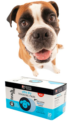 purina-training-pads