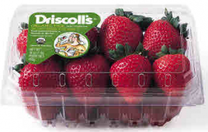 Driscolls-Strawberry