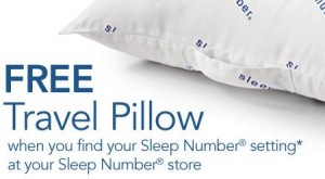 FREE Sleep Number Travel Pillow