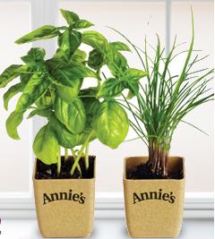 Annie's Herb Kit