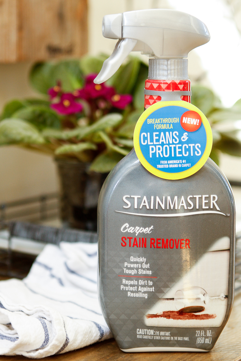 How To Clean Pet Stains From Stainmaster Carpet