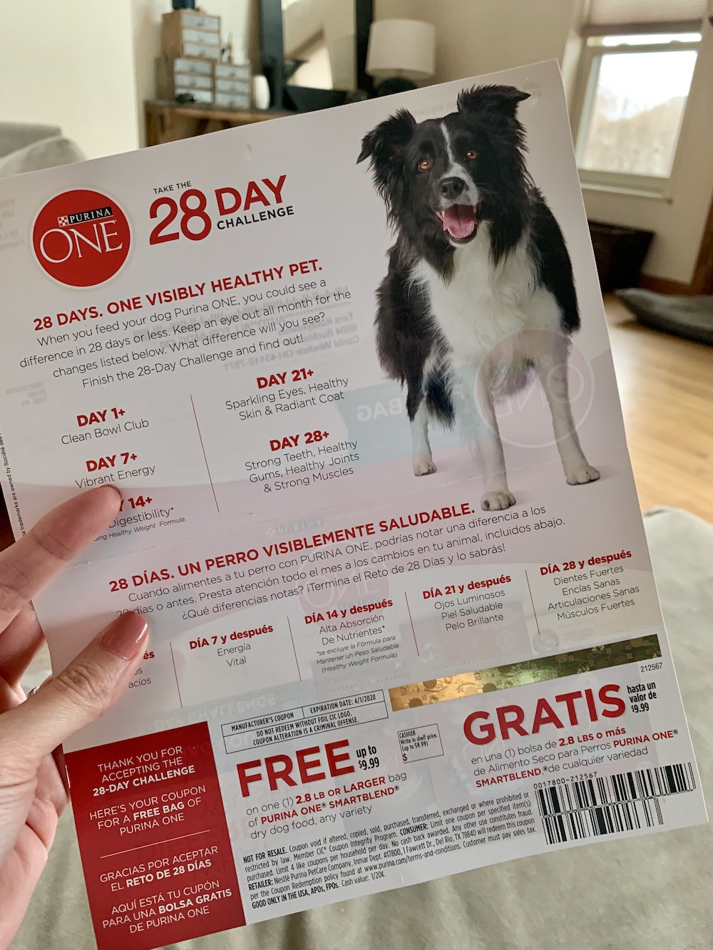 graphic regarding Purina One Printable Coupon identified as My Totally free Bag of Purina One particular Pet Food items Coupon Arrived Nowadays! - Bundle