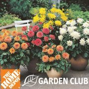 Sign Up For Home Depot Garden Club And Get 5 Coupon